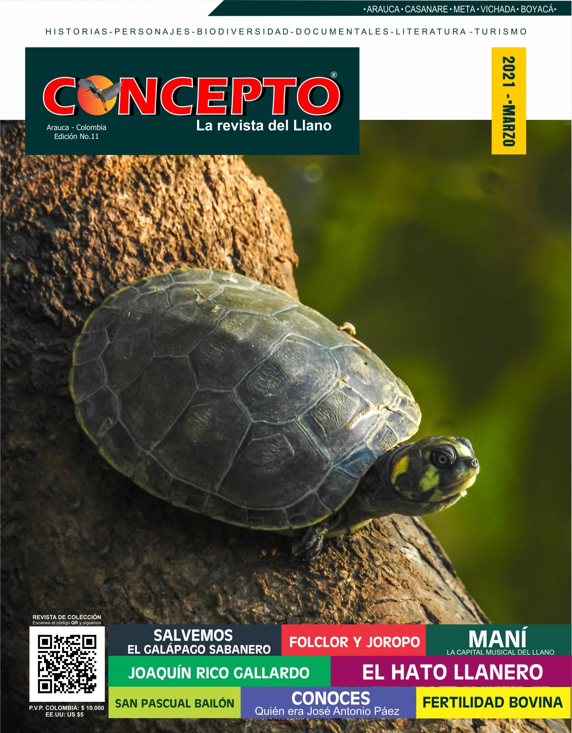 Revista Concepto Edición 11 Parte 1 CURVAS PORTADA